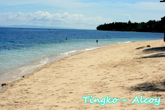 BEST BEACHES IN CEBU: