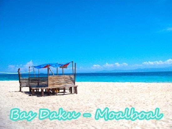 http://www.travellingthephilippines.info/basdaku-beach-in-moalboal/