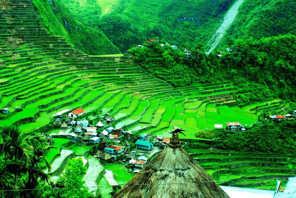 http://flauntingitcharlton.wordpress.com/2013/02/15/travelling-batad-banaue-rice-terraces/