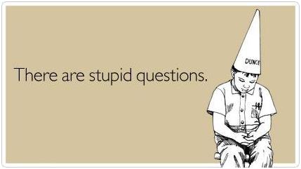 Ask dumb questions.