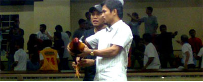 Pacquiao won millions in cockfighting.