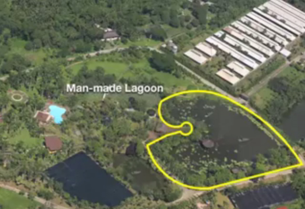 The Binay Farm has not one but two man-made lagoons.